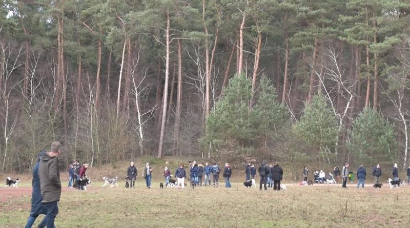 Mensch Mit Tier - Wir Helfen Dir e. V. - ein voller Erfolg - Foto: NordNews.de