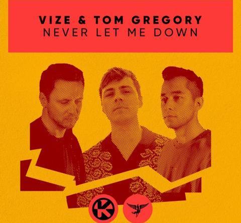 VIZE & Tom Gregory - Never Let Me Down