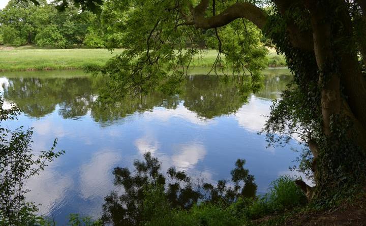 Öffentliche Naturführungen im Emstal gut nachgefragt - Zusatztermin am 27. Juni