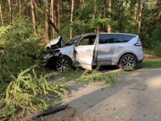 Umgestürzter Baum und auslaufende Betriebsstoffe nach Verkehrsunfall - Foto: SG Sögel / Feuerwehr