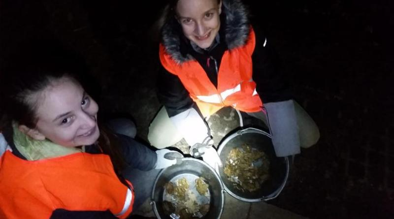 Das Foto von der Krötenwanderung zeigt die beiden Mädchen Finja Janke links und Alina Swart rechts. - Foto: Stadt Nordhorn