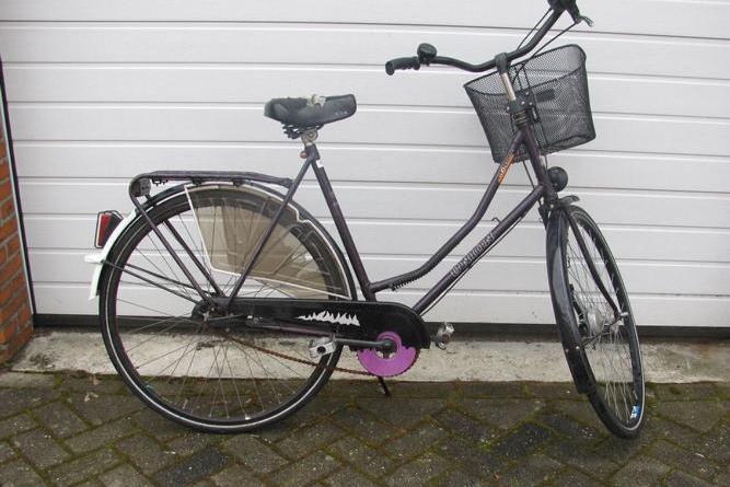 Nordhorn - Fahrraddiebe auf frischer Tat gefasst - Fahrradeigentümer gesucht - Foto: Polizei