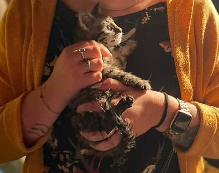 Feuerwehr rettet Katze nach zweistündiger Rettungsaktion - Foto: Stadt Papenburg / Feuerwehr