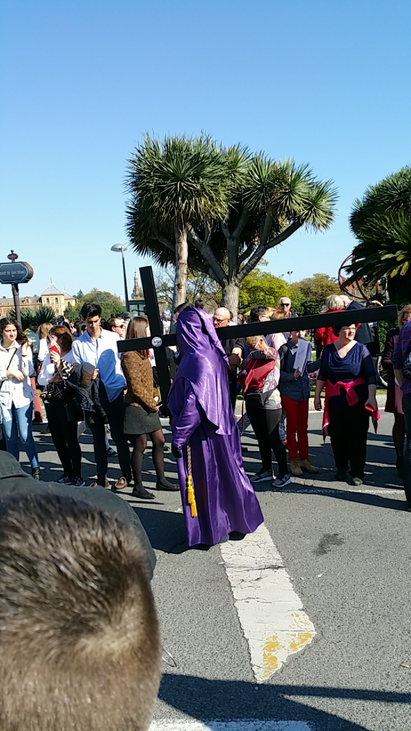 A member of the procession in a traditional capirote carries a crucifix as part of the celebration