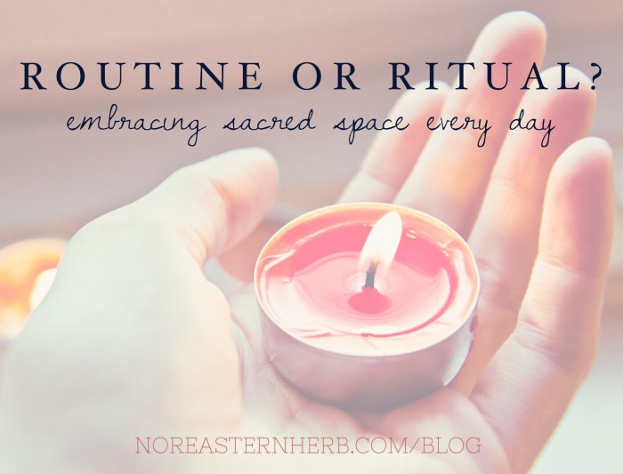 Routine or ritual? Embracing sacred space every day.  noreasternherb.com/blog