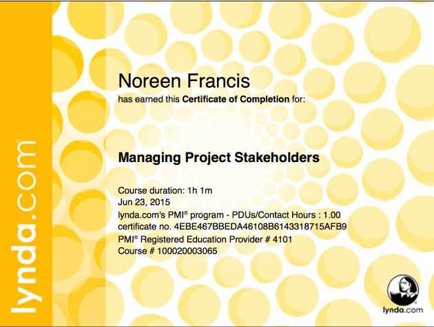 Stakeholders copy