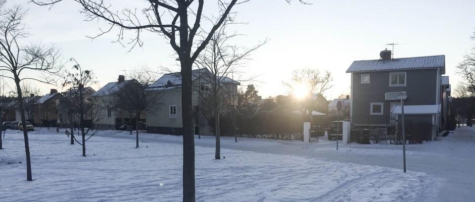 Enskede vinter
