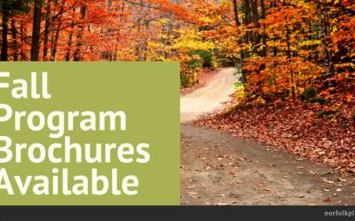 Fall Programming
