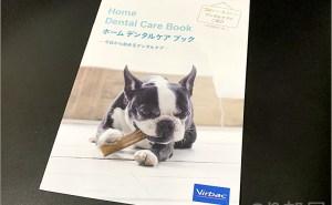 【必見】犬の歯磨きで歯周病や病気を防ぐオススメの方法。放置すると頬に穴が空きます。歯磨きを嫌がる犬には水やご飯に混ぜて予防を!