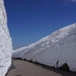 雪の回廊と青空が眩しい春