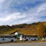 三本滝レストハウス前にバス停がある