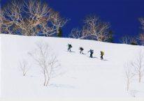 春 「山頂を目指して」 石川様 神奈川県