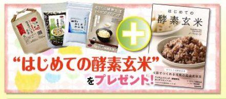 発芽玄米 酵素玄米 安い なでしこ健康生活