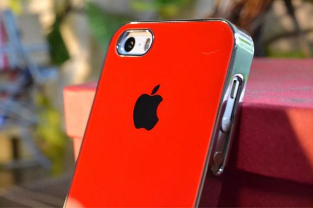 Appleマーク入りのiPhone5sケース装着7
