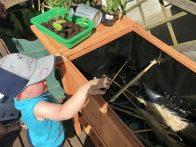 Kristof ist fürs Grobe zuständig: Gartenschnitt gehört ins Hochbeet