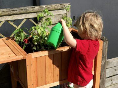 Gärtnern mit Kindern – Merlin überprüft und gießt sei Hochbeet am zweiten Tag – check!