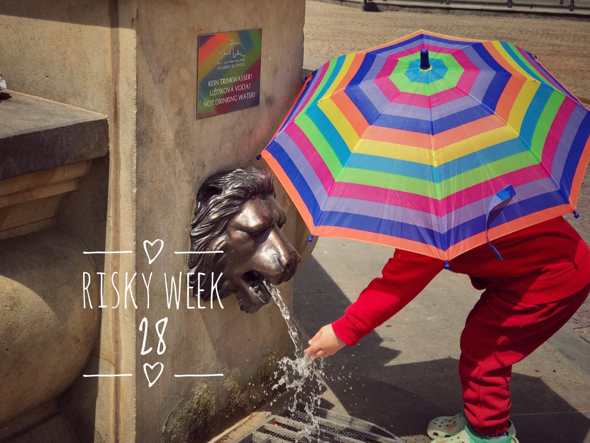 Risky Week 28 – Merlin in Annaberg