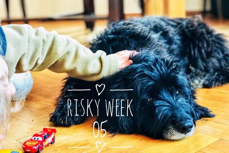 Risky Week 05 – Merlin streichelt Hund Wilma