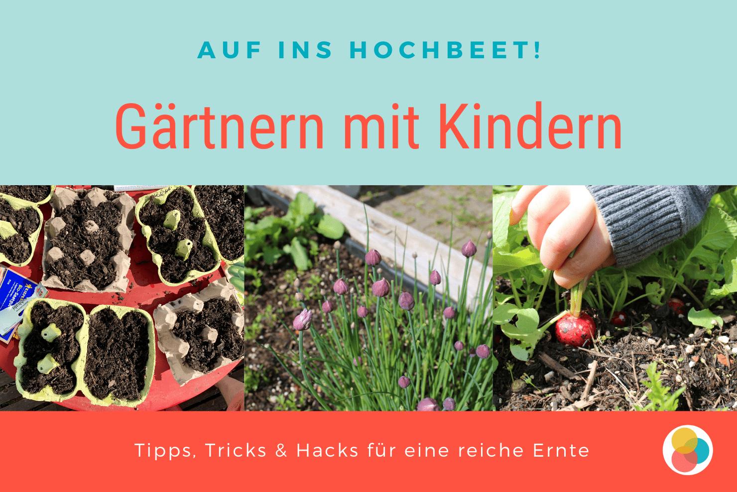 Gärtnern mit Kindern – vom Samen bis zur Frucht