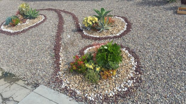 Different colored stones are used to create a swirling effect around small islands of plants