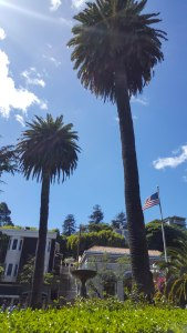 Palm trees, storefronts, an American flag and sunshine in Sausalito, CA