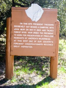 Commemorative marker at meadow where Teddy Roosevelt and John Muir had their oh-so-important campout.