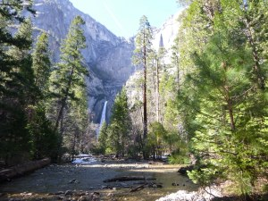 Lower Yosemite Falls and Yosemite Creek