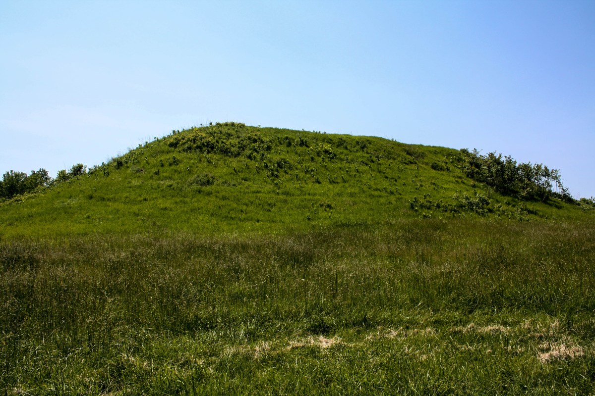 Mounds seen on guided hike