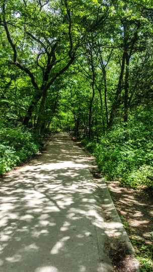 Hiking at Starved Rock State Park