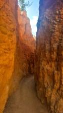 Narrow rock walls along the trail