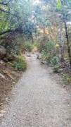 Little Cottonwood Creek Trail
