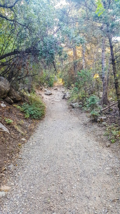 Little Cottonwood Creek Trail