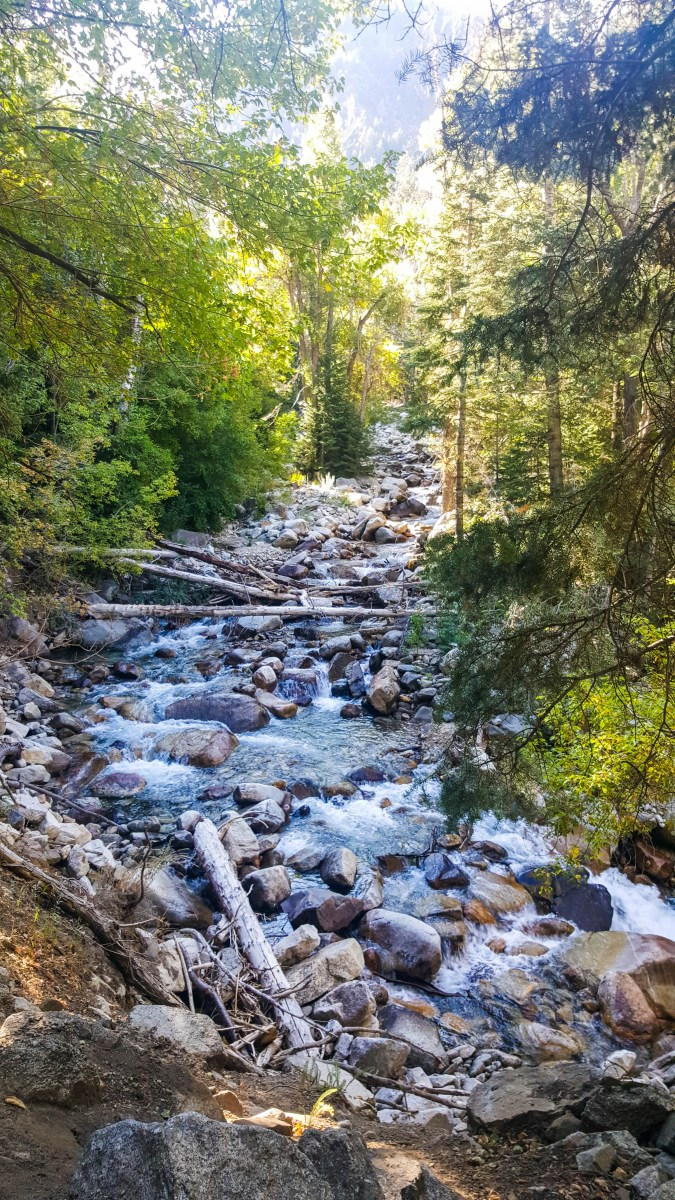 Another creek crossing along Little Cottonwood Creek Trail