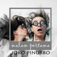 Malam Pertama - Puisi Joko Pinurbo