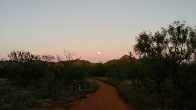 Moonset over the Canyon Rim
