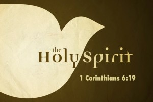 The Biblical Doctrine Of The Holy Spirit