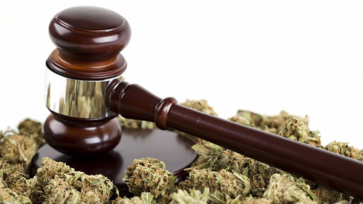 Marijuana Law Reform