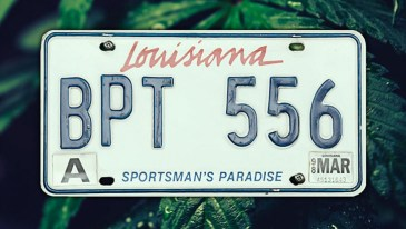 Louisiana Marijuana Laws