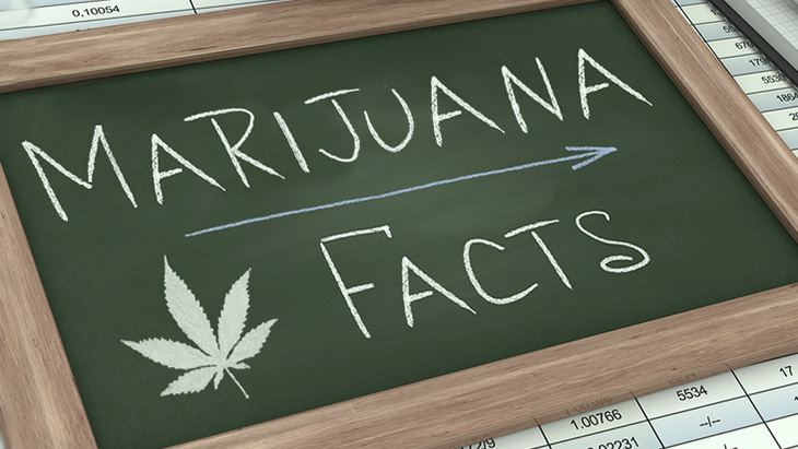 Marijuana Fact Sheets