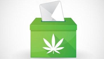Marijuana Ballot Initiatives
