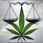 Marijuana Justice Scales