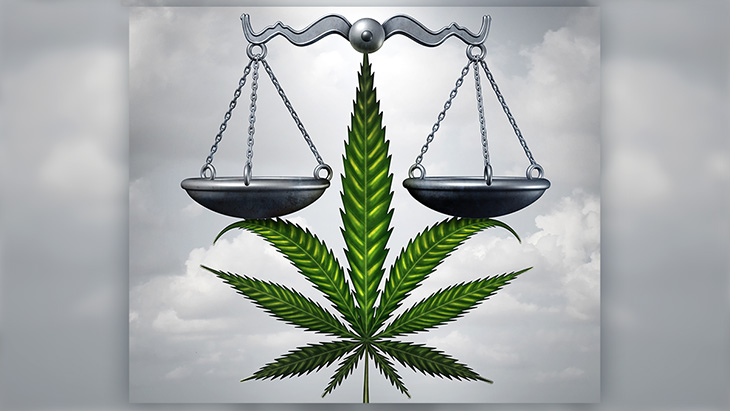 SCOTUS Declines to Hear Appellate Challenge to Federal Cannabis Prohibition