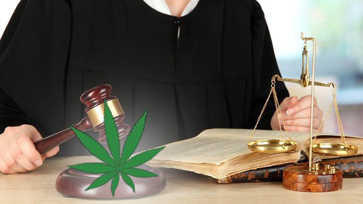 Cannabis Ruling