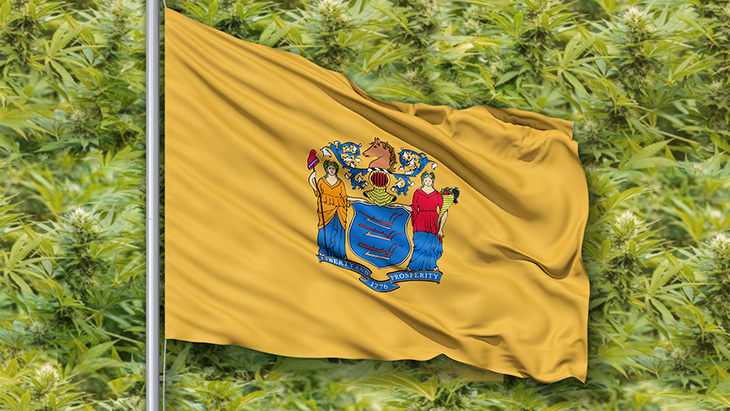 New Jersey Marijuana Laws
