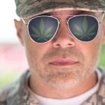 Veterans and Marijuana