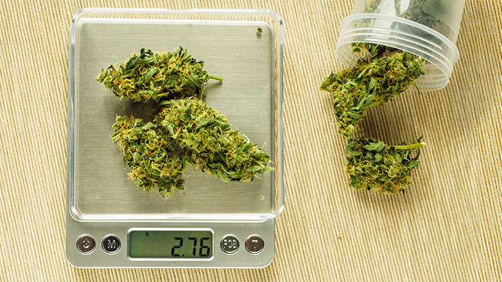 Marijuana weight