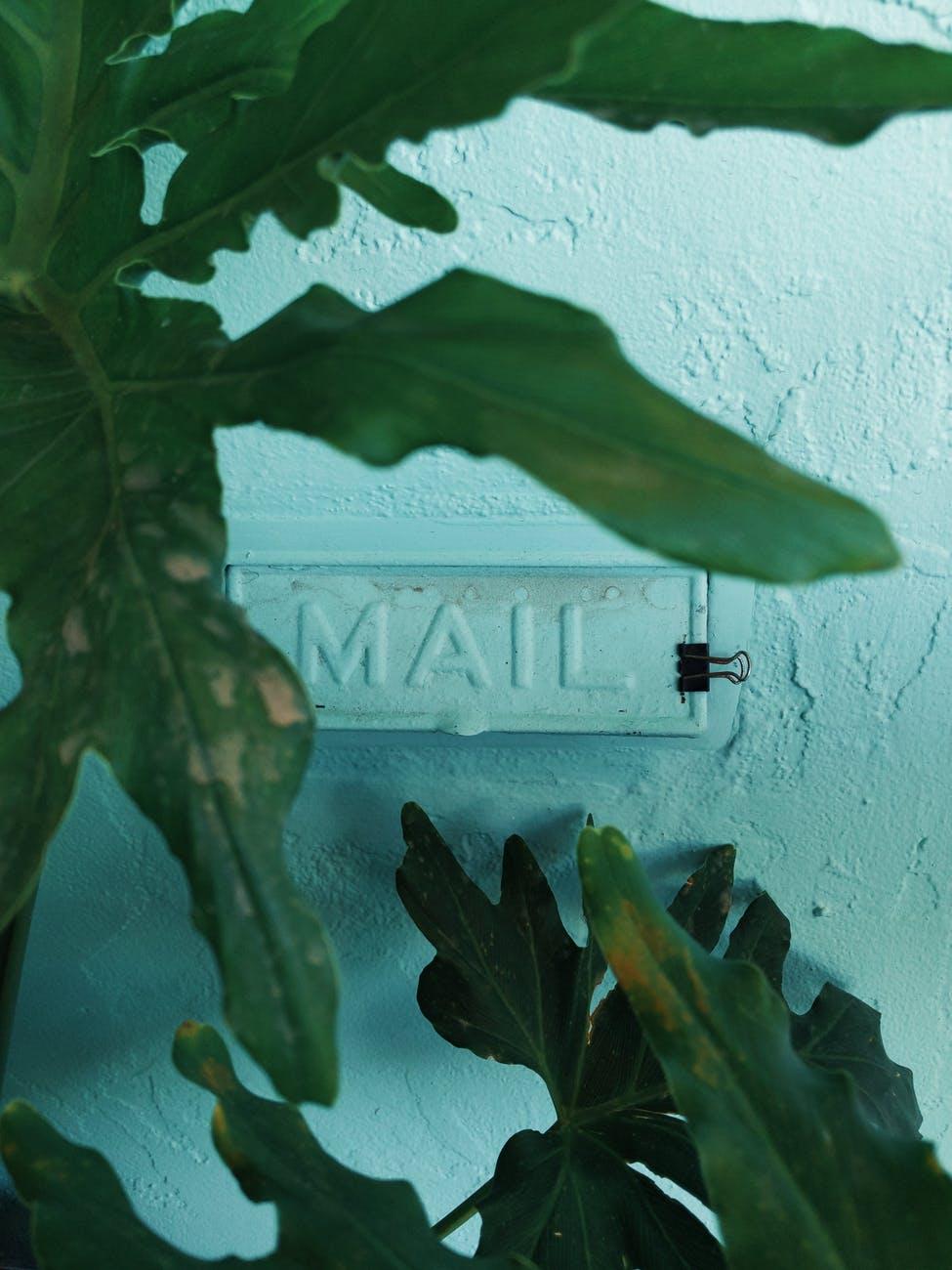 black binder clip near wall