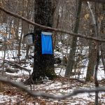 A visit to see Wintergreen's maple syrup experiment