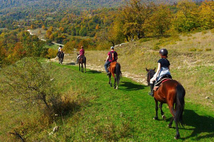 прогулка на лошадях в Альпах Италии