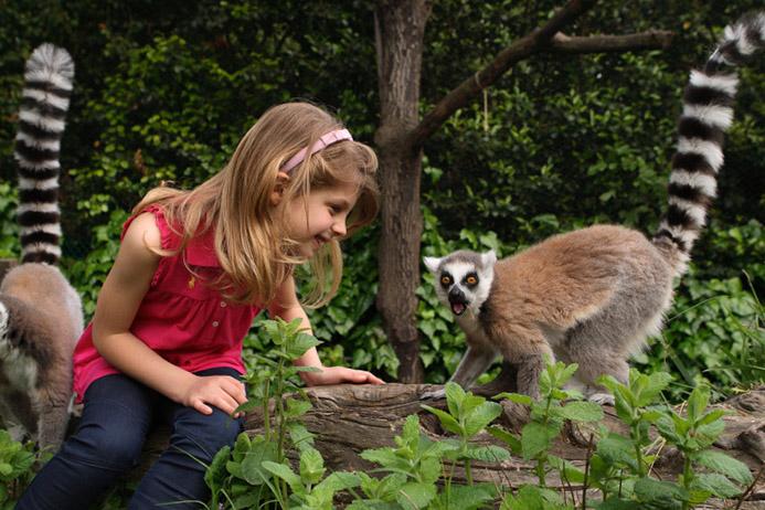 путешествие с детьми в Италии в Тоскане зоопарк